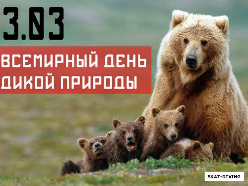 Открытки Всемирный день дикой природы. Семейство бурых медведей открытки фото рисунки картинки поздравления