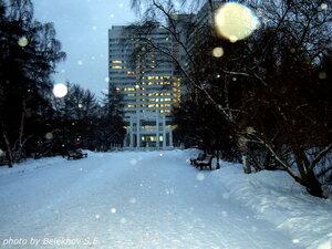 зима, Мурманск