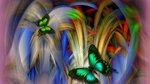 dreams-of-beautiful-wings-774-1920x1080.jpg
