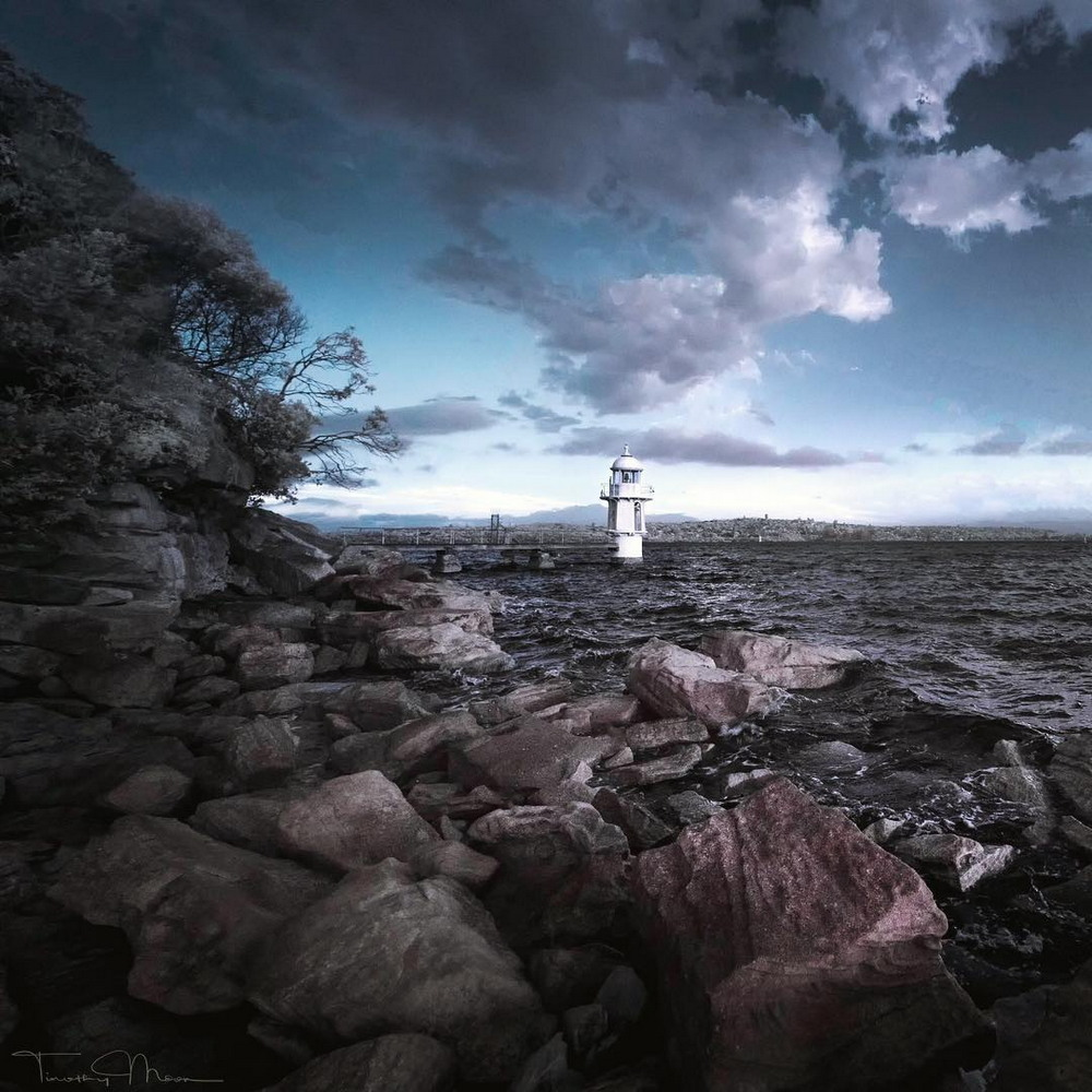 Природа на снимках Тимоти Муна