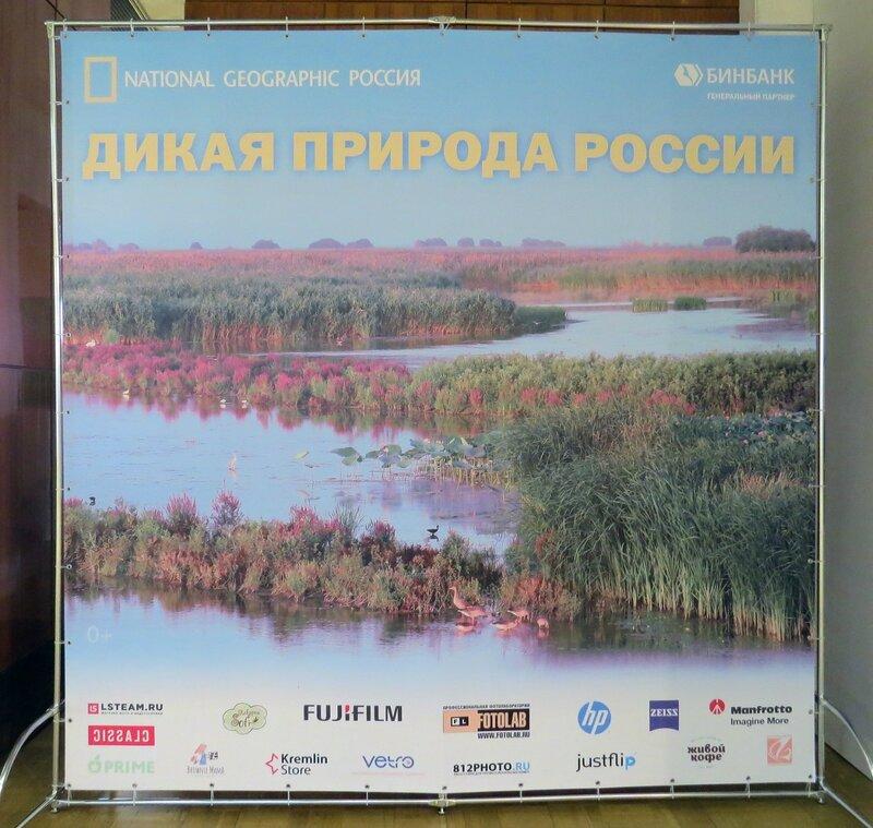 https://img-fotki.yandex.ru/get/516365/140132613.6a3/0_2408dd_5d97a094_XL.jpg