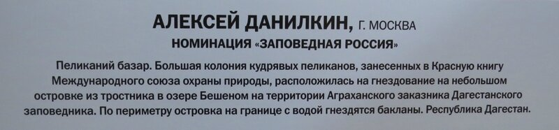 https://img-fotki.yandex.ru/get/516365/140132613.6a5/0_24095b_e0b88bbe_XL.jpg