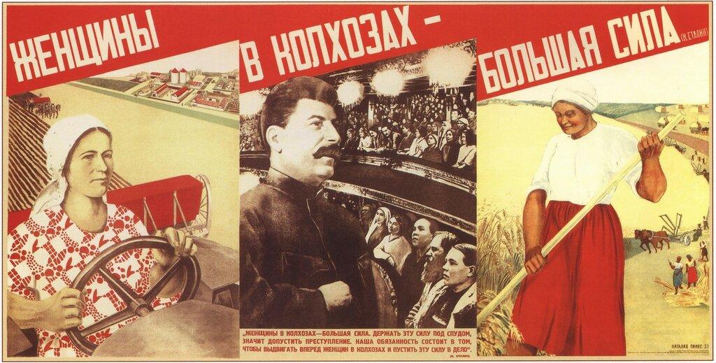 pinus-1933.jpg