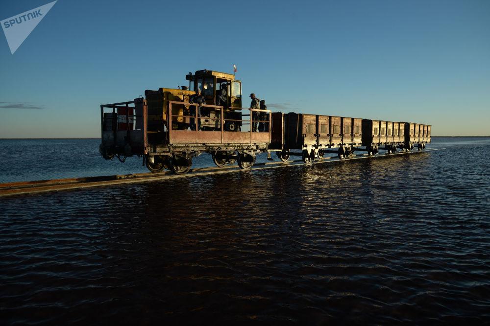 Озеро Малиновое относится к содовым и горчичным озерам.