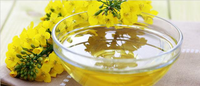 Тыквенное масло  Масло достаточно дорогое, потому что для производства 1 литра необх