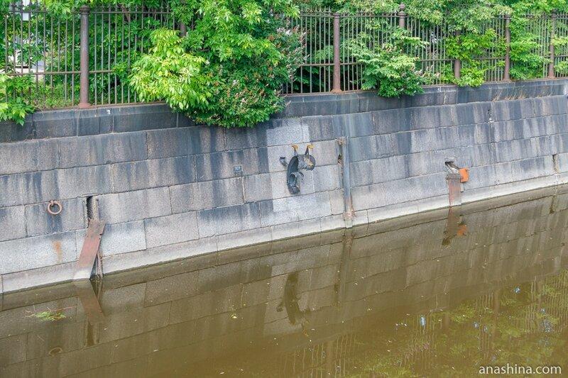 Памятник колюшке на стенке Обводного канала, Кронштадт