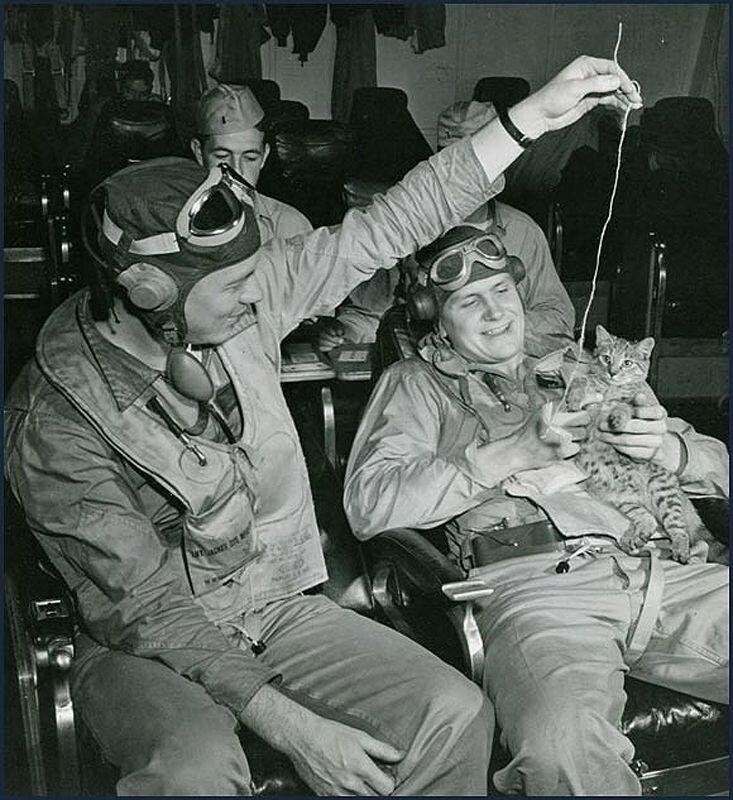 Американские пилоты отдыхают и играют с котом-талисманом авианосца в июле 1944 года.