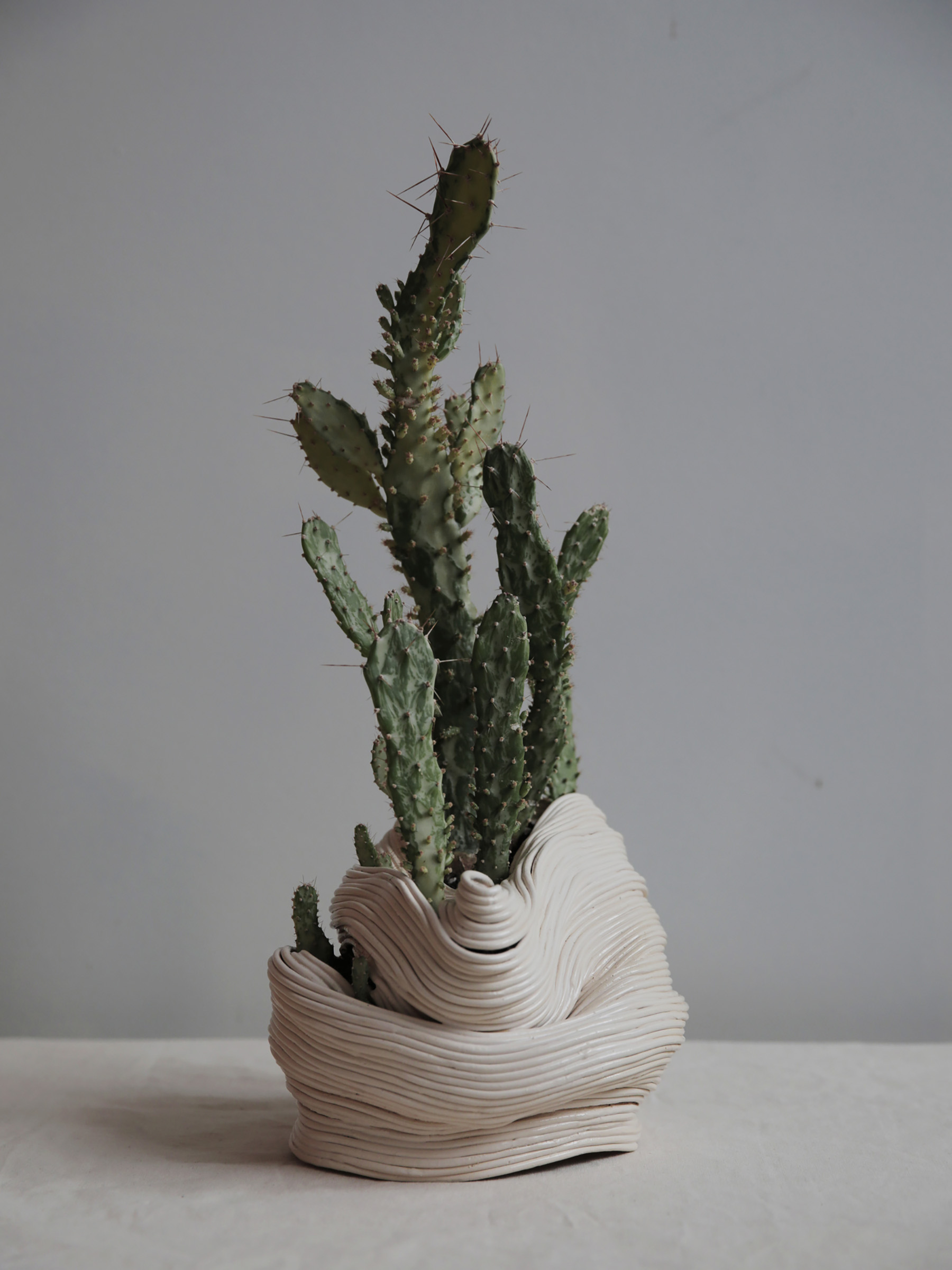 Beautifully Imperfect Ceramic Plant Vessels (6 pics)