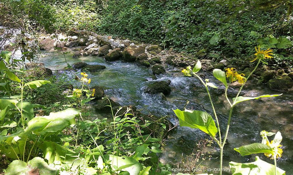 река Псырцха фото
