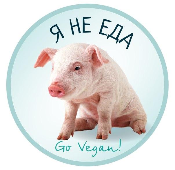 1 ноября. Всемирный день вегана. Я не еда