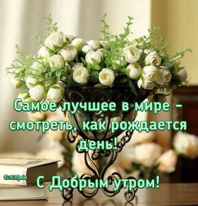 https://img-fotki.yandex.ru/get/517076/131884990.f5/0_160f4c_4bba209c_M.jpg