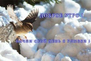 https://img-fotki.yandex.ru/get/517076/131884990.f6/0_161173_f96b6e5c_M.jpg