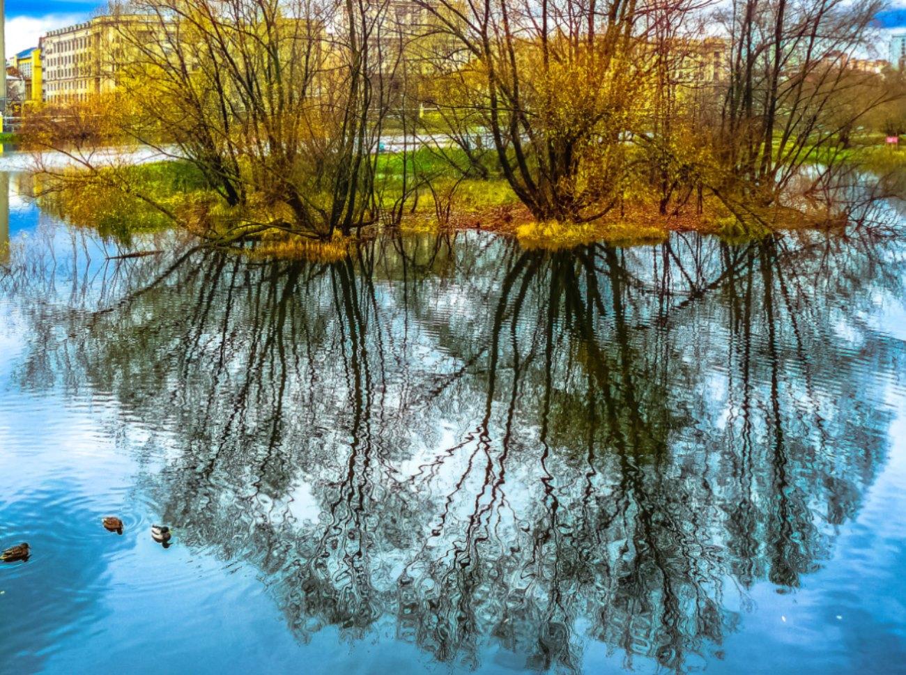 irina-fortuna-lefortovsky-park 03.jpg