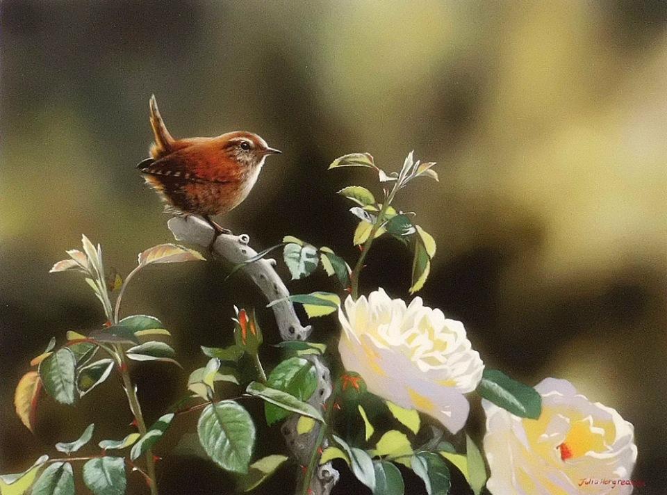 Птицы / художник Julia Hargreaves