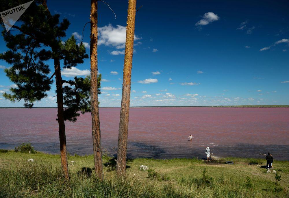 Бурлинское озеро является крупнейшим месторождением соли в Западной Сибири: его площадь превышае
