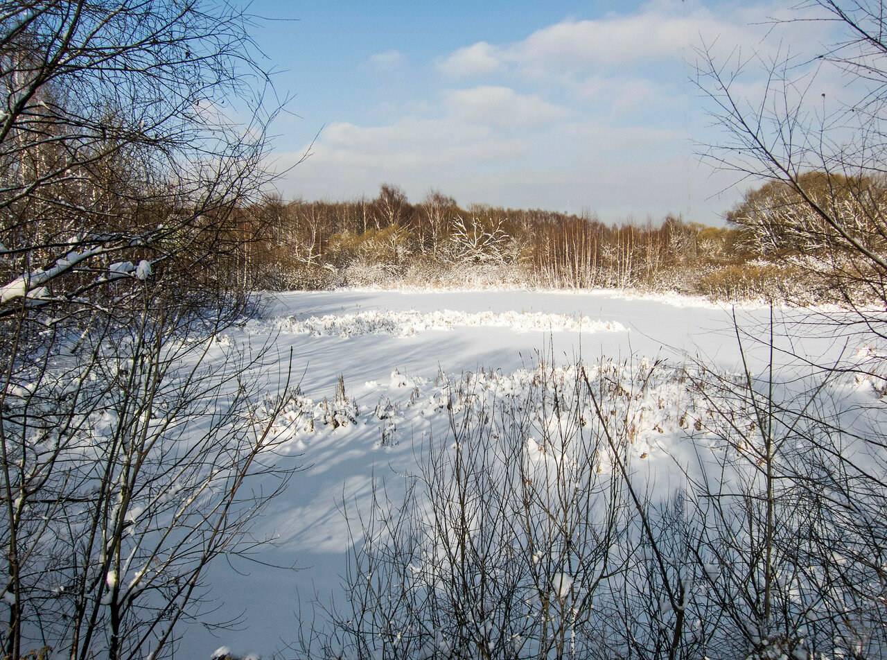 Спит пруд в оковах ледяных