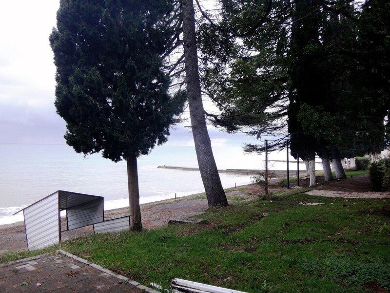 У моря Чёрного, в Абхазии, время зимнее, Новогоднее (8).JPG