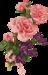 Rose-4.png