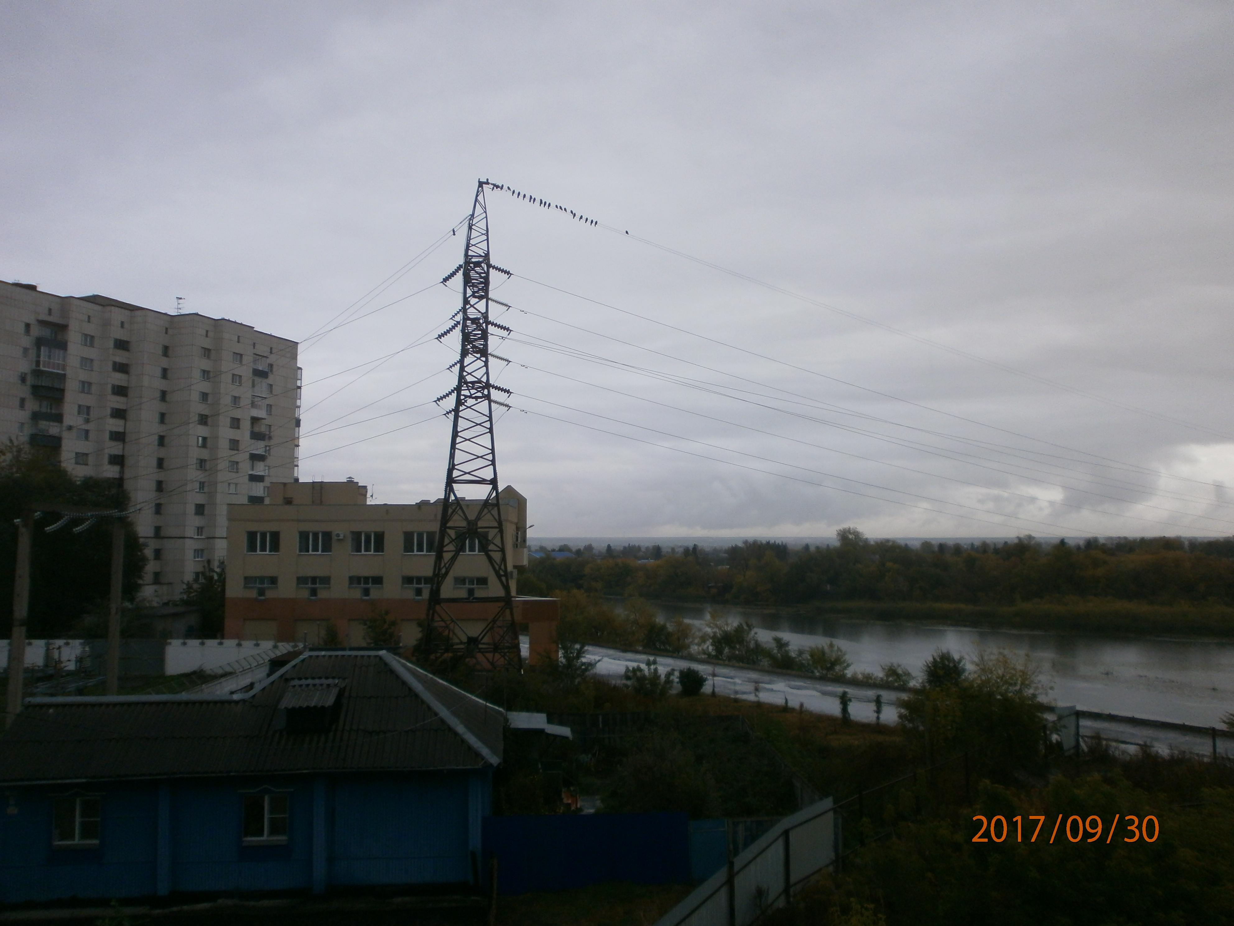 Серый осенний денек