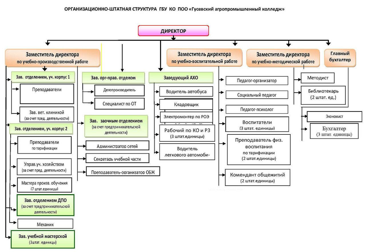 Должностная структура организации схема