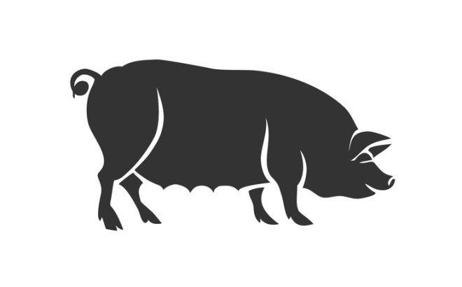 Свинья (Кабан) — интеллект и вспыльчивость. Казалось бы, Кабан олицетворяет грубую силу, однак