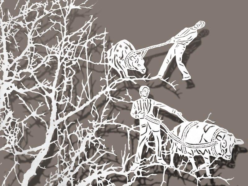 Paper Art - Bovey Lee