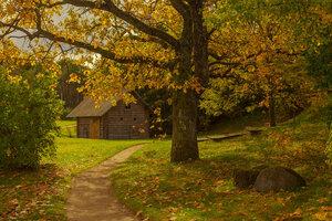 Золотая осень в Бугрово...