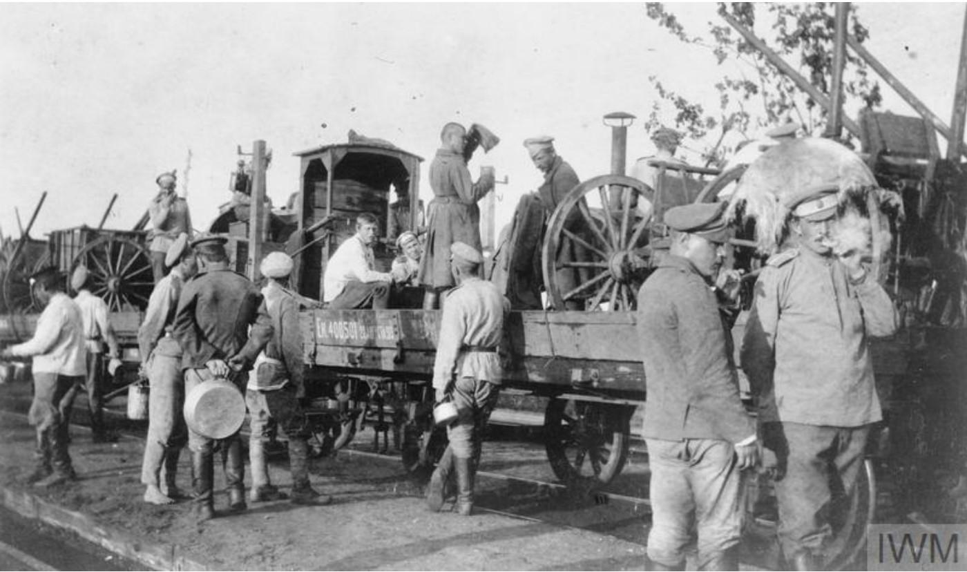 Транспортный поезд III Донского корпуса, замаскированный листвой, за линией фронта, май 1919