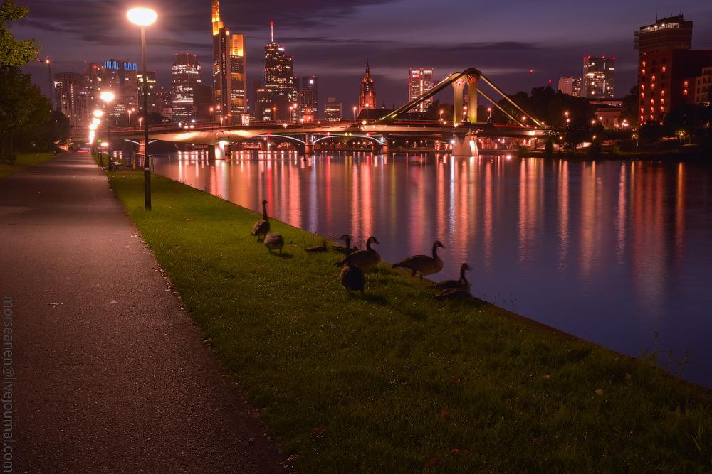 Frankfurt-(63).jpg
