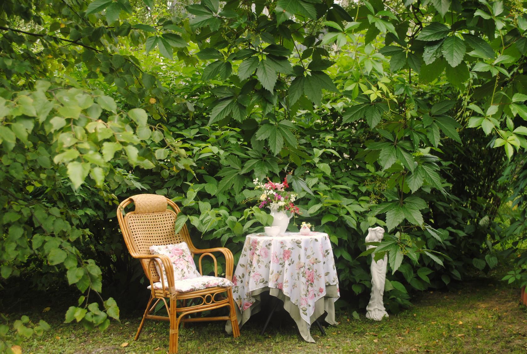 стол в саду и кресло