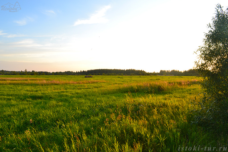 августовское_поле_avgustovskoe_pole