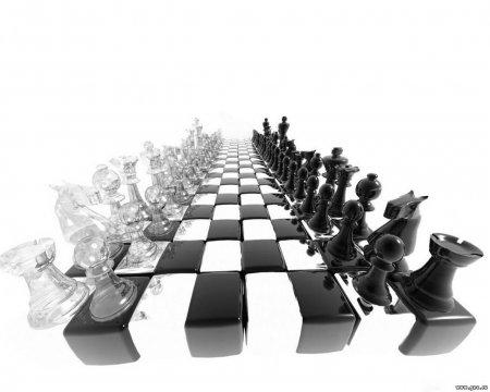 20 июля - Международный день шахмат!