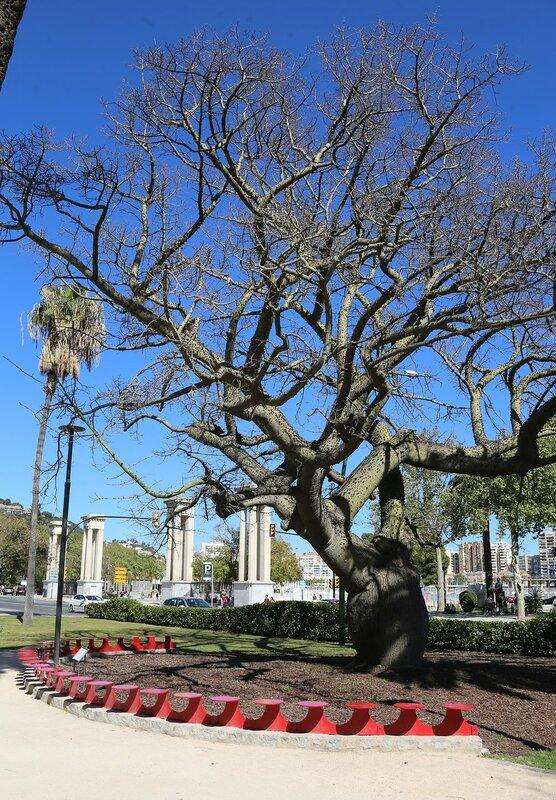 Малага. Площадь поэта Альфонсо Каналеса (Plaza del poeta Alfonso Canales)