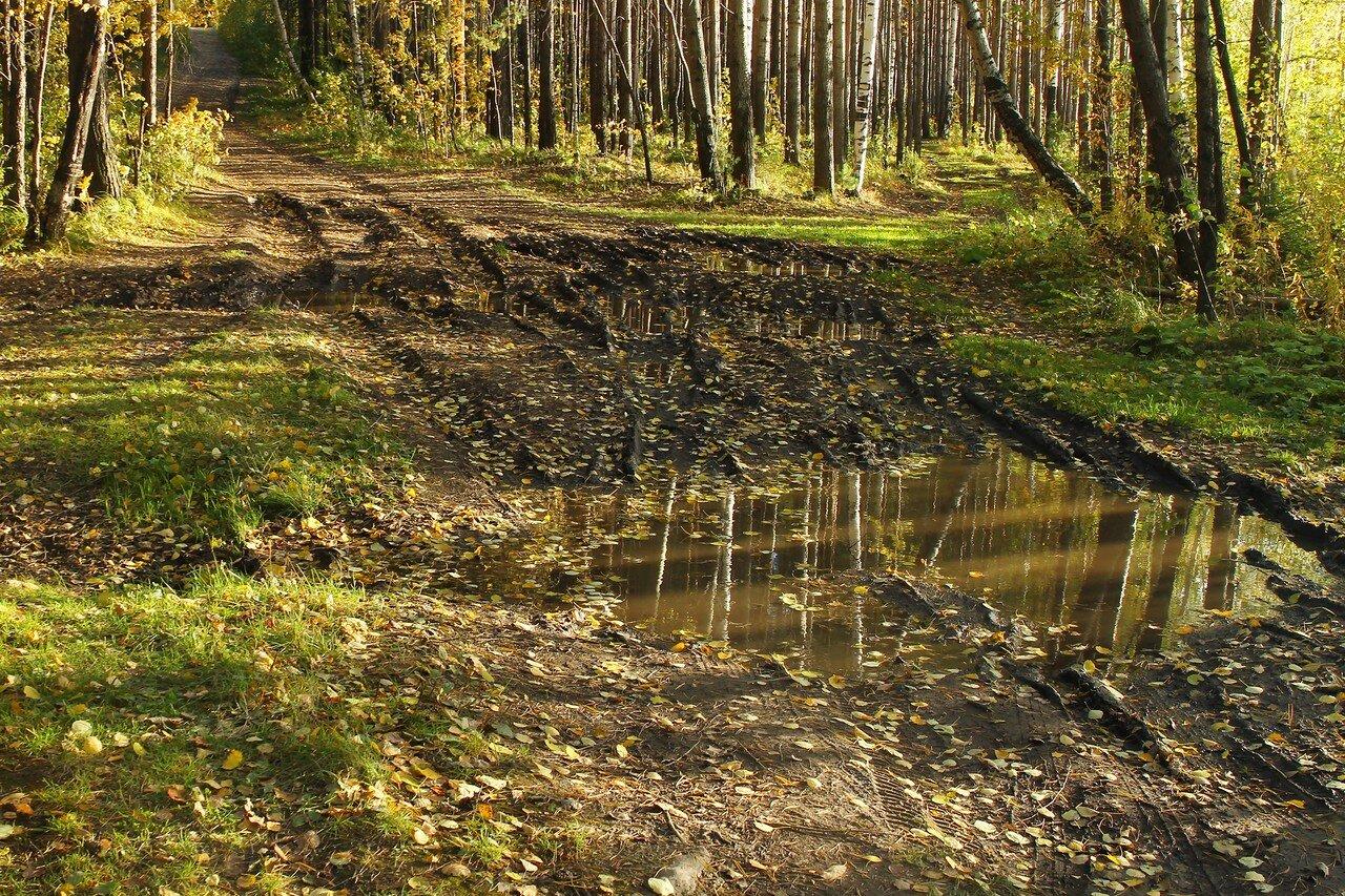Средний Урал. Начало осени