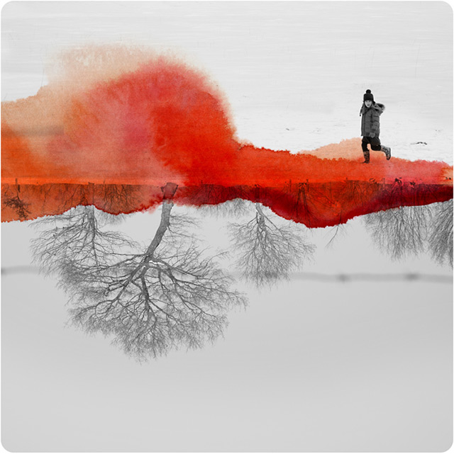French artist Fabienne Rivory creates these unusually beautiful images by working with mirrored phot