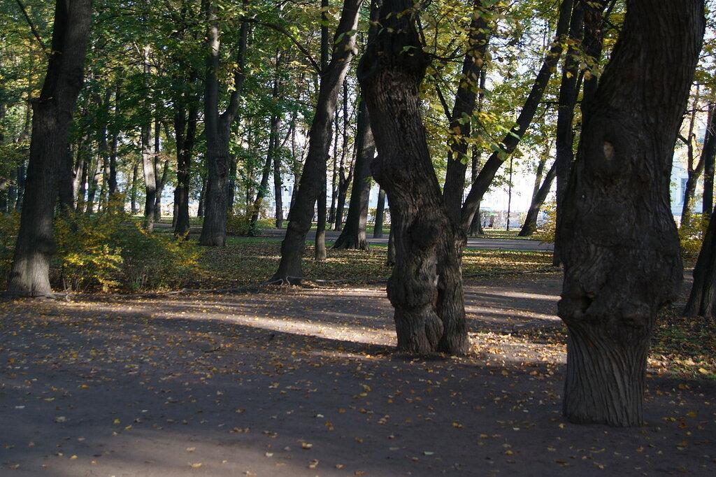 Летний_сад._Фото_2008_года.JPG