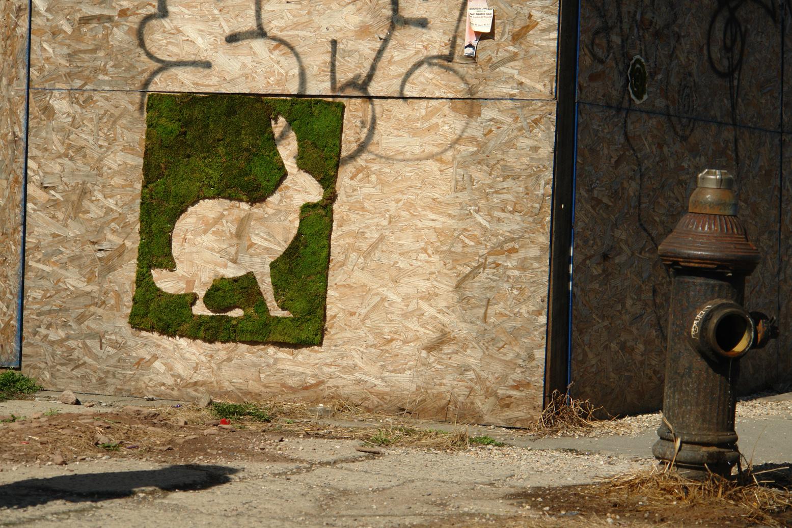 Green Street Art - Edina Tokodi aka Mosstika