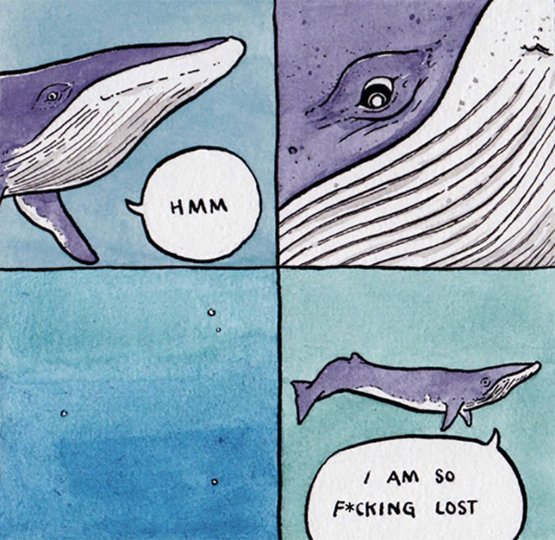 Il devoile la vie secrete des animaux dans des illustrations hilarantes