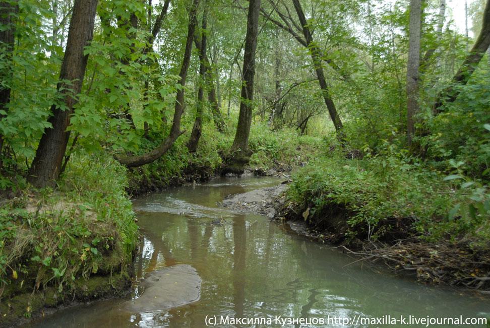 Изгибы реки Городни