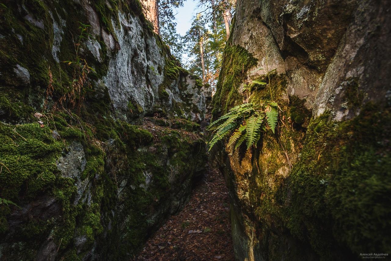 Рачейкие Альпы, каменный лабиринт