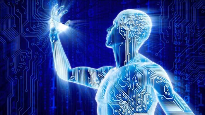 лишние органы человека