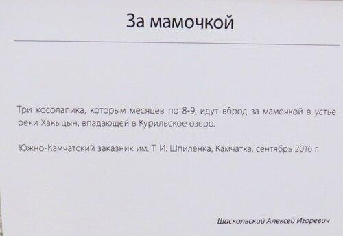 https://img-fotki.yandex.ru/get/518060/140132613.6c5/0_2440aa_3e0fc755_L.jpg
