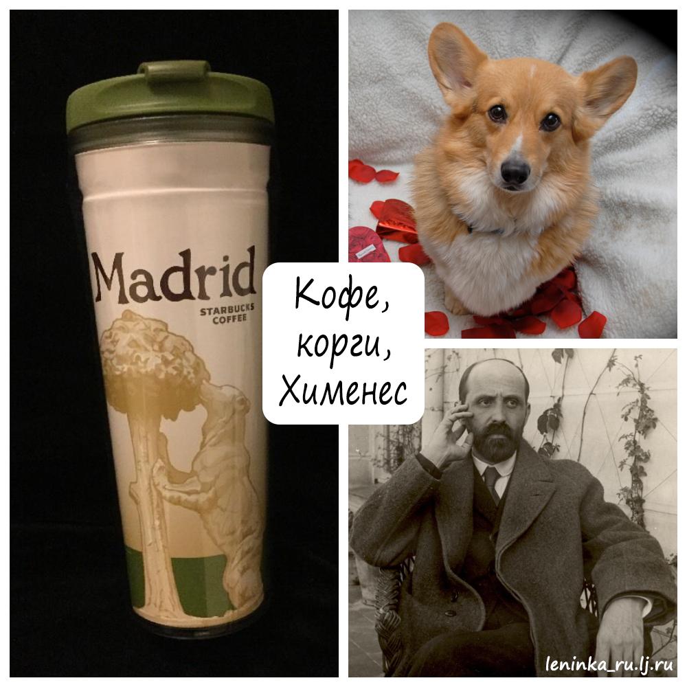 корги, кофе, Хименес