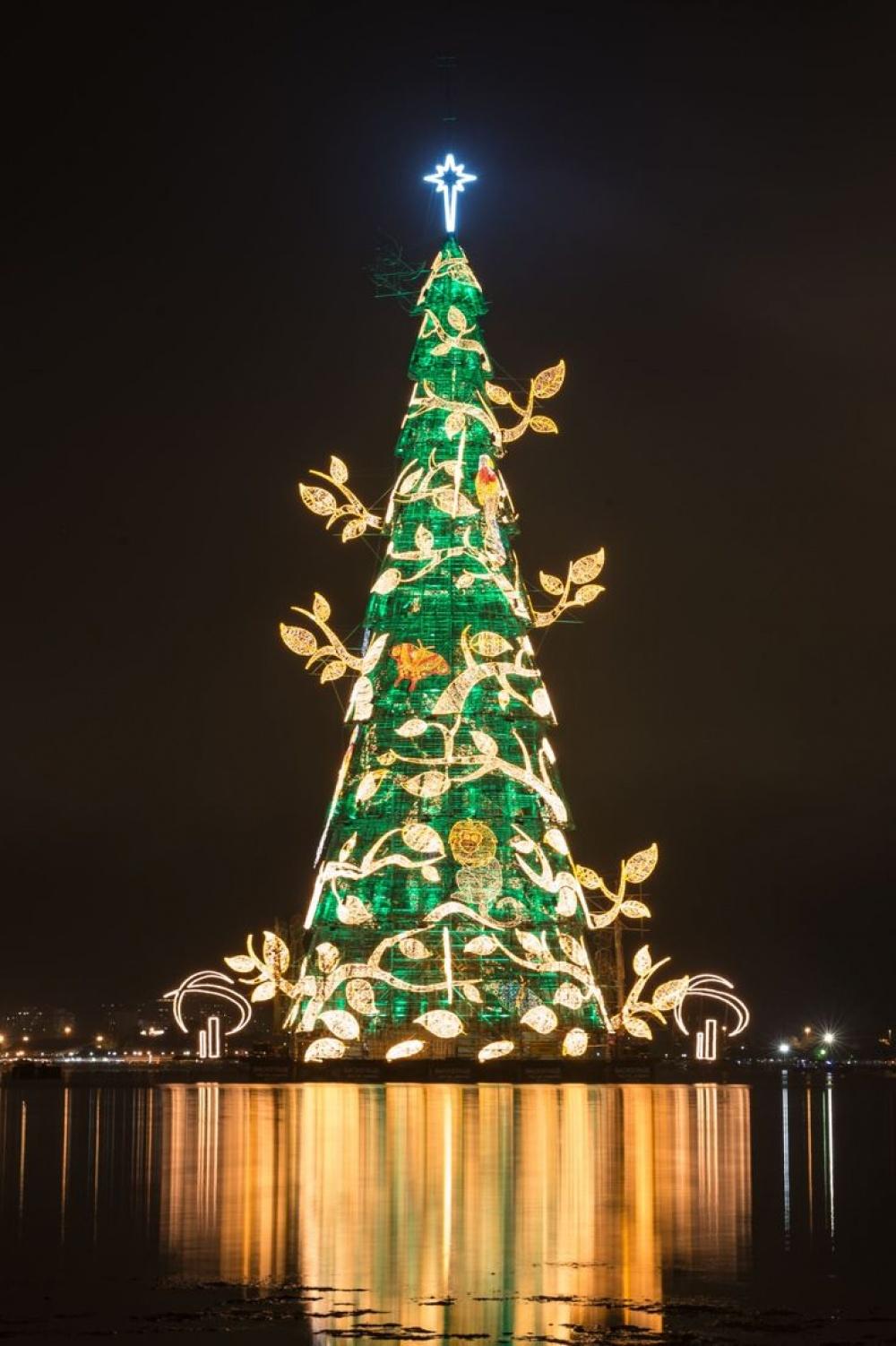 © Yasuyoshi Chiba  Главная рождественская елка Бразилии— самая высокая плавучая елка вмире.