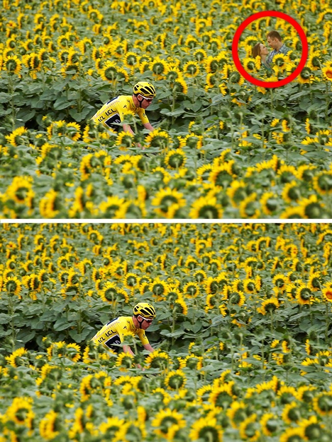 © reuters  © depositphotos  Поле подсолнухов нафото— один изучастков, которые входили