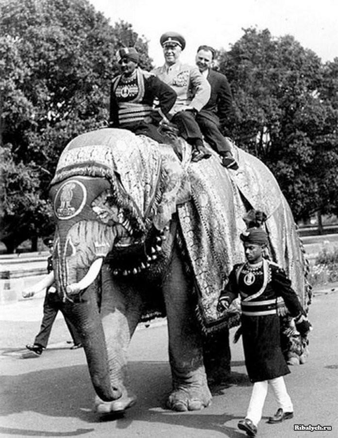 17. ХХ сьезд КП США Чикаго, 1939 год. Над трибуной портрет Линкольна. По бокам — Ленина и Ст