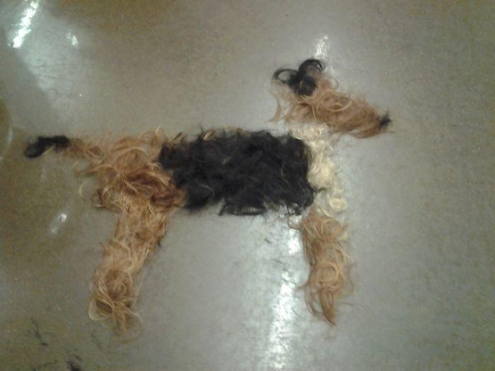 Вот чем иногда занимаются скучающие парикмахеры на работе в ожидании клиентов.   «Свадеб