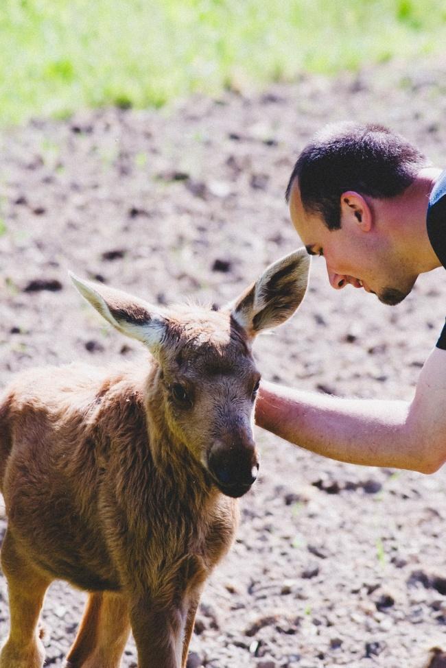 © Emma the moose/facebook      Бонус: этот босой мальчишка отдал бездомной собаке