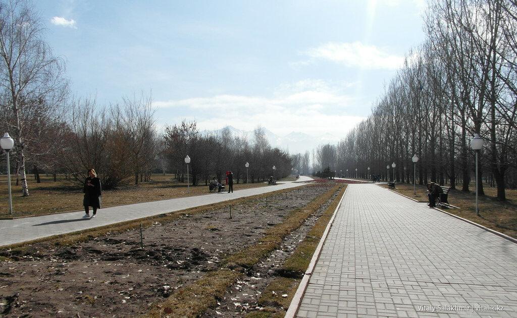 Аллея в Парке Первого Президента