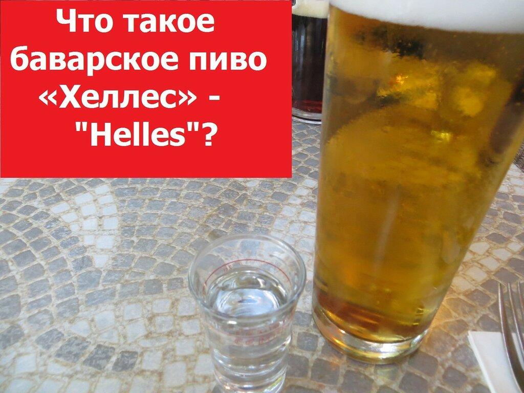 Что такое баварское пиво «Хеллес» -